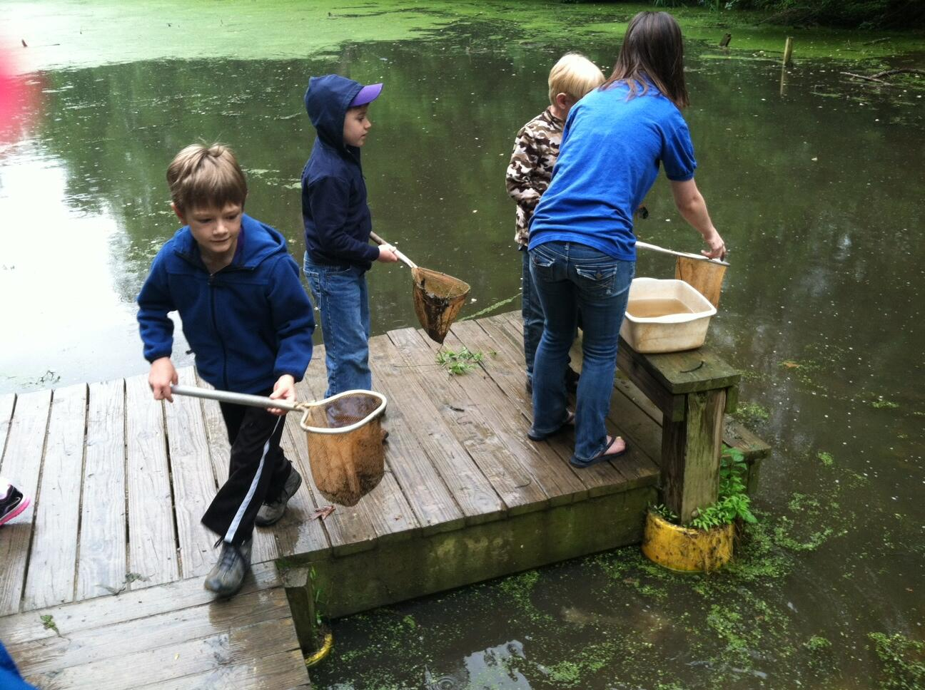 Catching tadpoles at Hidden Pond