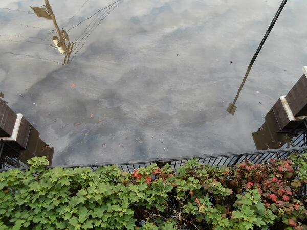 Photo dated 10/31/12 – oil floating on top of #Sandy floodwaters in #Hoboken http://pic.twitter.com/s2Z5OI2Won