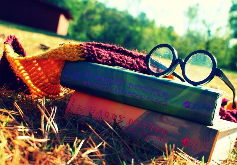 """Сова Гарри Поттера on Twitter: """"""""Счастье можно найти даже ..."""