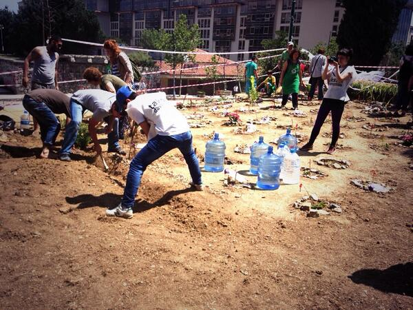 11.39 Gezi Parkinda kesilen agaclarin yerine fidanlar dikiliyor. pic.twitter.com/A8ExGaCSvJ