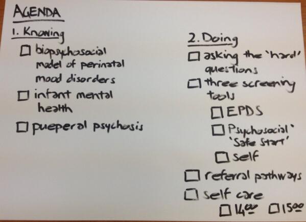 Thumbnail for Perinatal Mental Health Workshop
