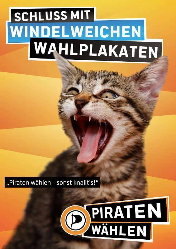 Wahlkampf mit Katze.