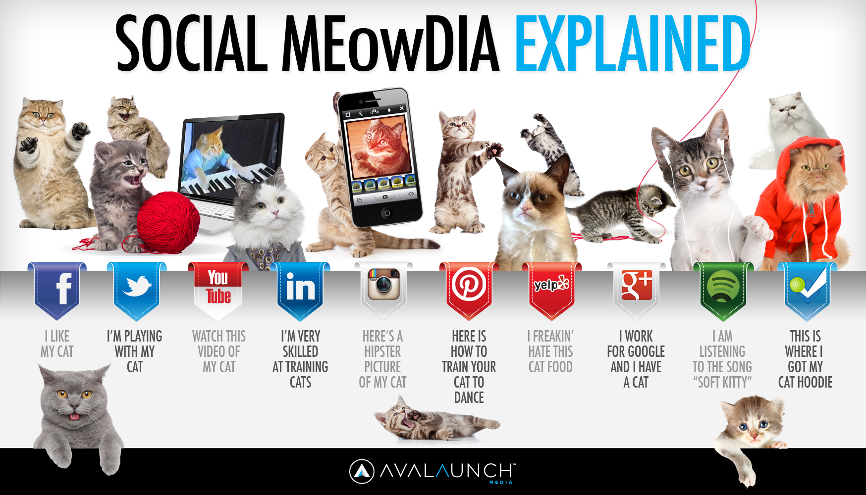 Explaining Social Networks with cats.