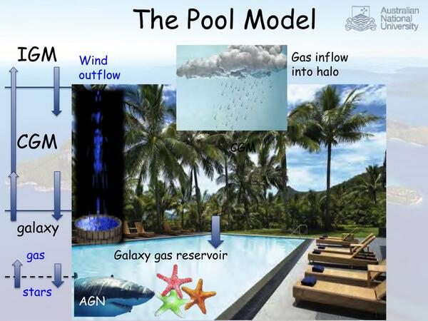 "Lisa Kewley's legendary slide of ""The Pool Model"" with #AGNshark from the Hamilton Island #GalaxyFireworks meeting. pic.twitter.com/CJ6TmEb7nz"