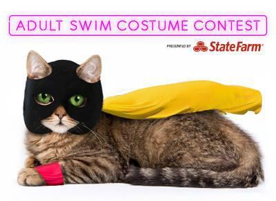 Adult swim contest