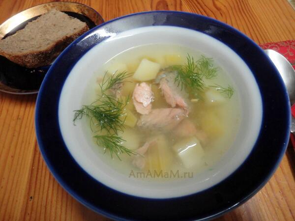 Рецепт суп из рыбы черепа где взять