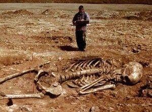 世界の謎's photo on 人の骨