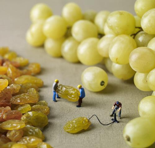 How Grapes Are Made http://t.co/KYBFK0loKd