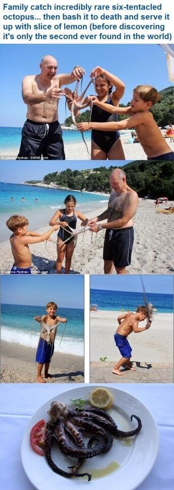 一家美國人在希臘海邊玩水捕捉到一只罕見的六條腿章魚。