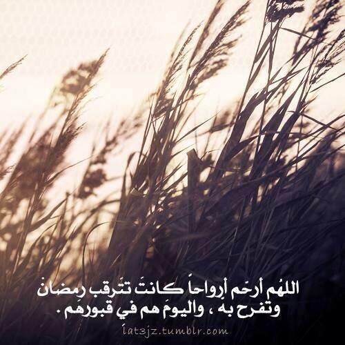 Dahmz Dahmz1 Twitter
