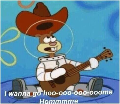 I Wanna Go Home Sandy Cheeks Funny Cod Tweets Funny Cod