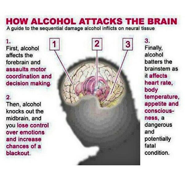 What Is The First Thing Affected When Drinking Alcohol