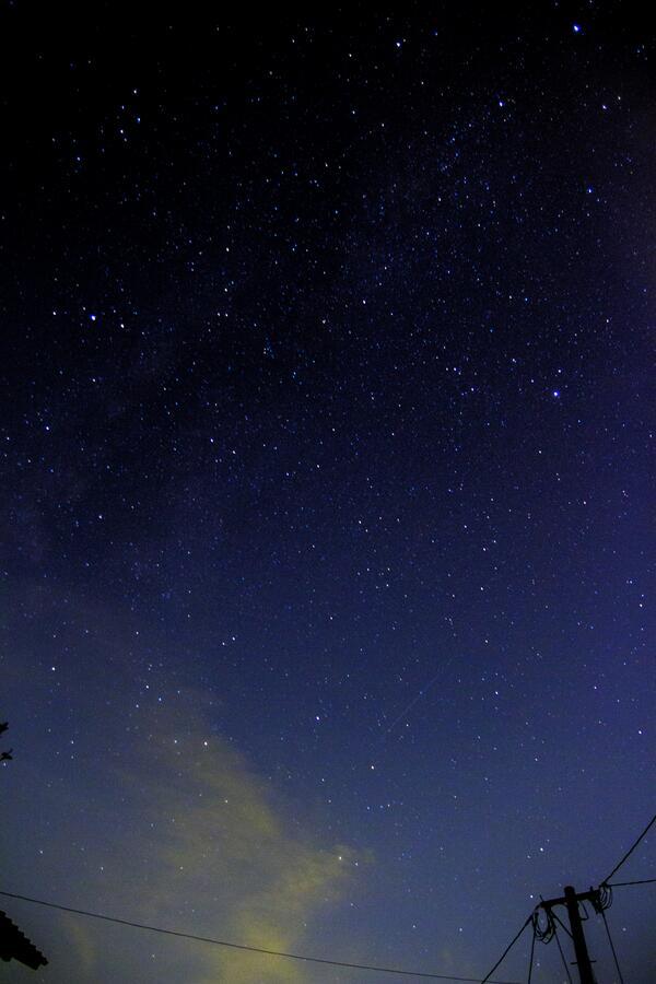 やたー!流星群撮れたよ-!