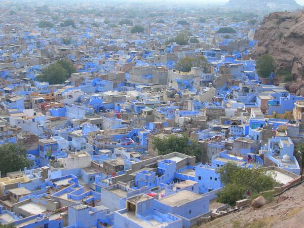 "Jodphur blew me away, I couldn't believe my eyes RT ""@Sihpromatum The blue city #Jodphur  #travelindia pic.twitter.com/h0Wq4psfYY"""