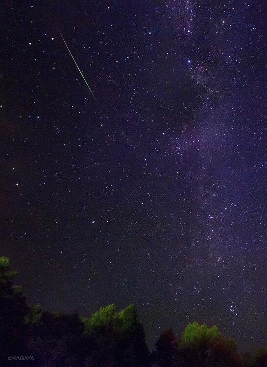 今朝のペルセウス座流星群の流星です。日光、戦場ヶ原にて撮影。(流星の下のほうの明るい星が北極星。右縦の光の帯が天の川。)