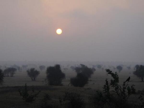 The desert sunrise in #Thar @ Khuri Village near #Jaisalmer, Rajasthan #travelindia pic.twitter.com/iaeeYun86c