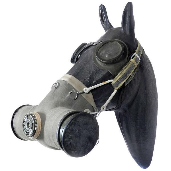 spooky pix on twitter quothorse gas mask from ww1 httpt