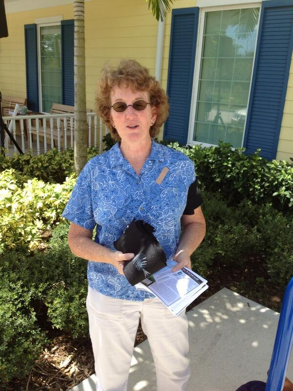 Marjorie Shropshire is handing out armbands for people to show support for #IndianRiverLagoon http://twitter.com/TCPalmEPfahler/status/370577767441502208/photo/1