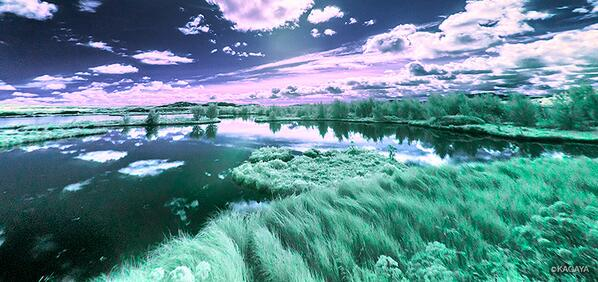 アイスランドの風景の赤外線写真です。(わずかに通した可視光を使って疑似着色しています)