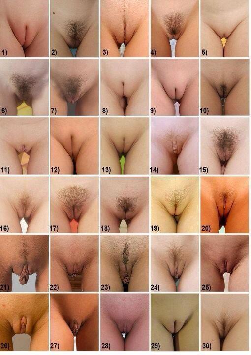 типы вагин фото порно