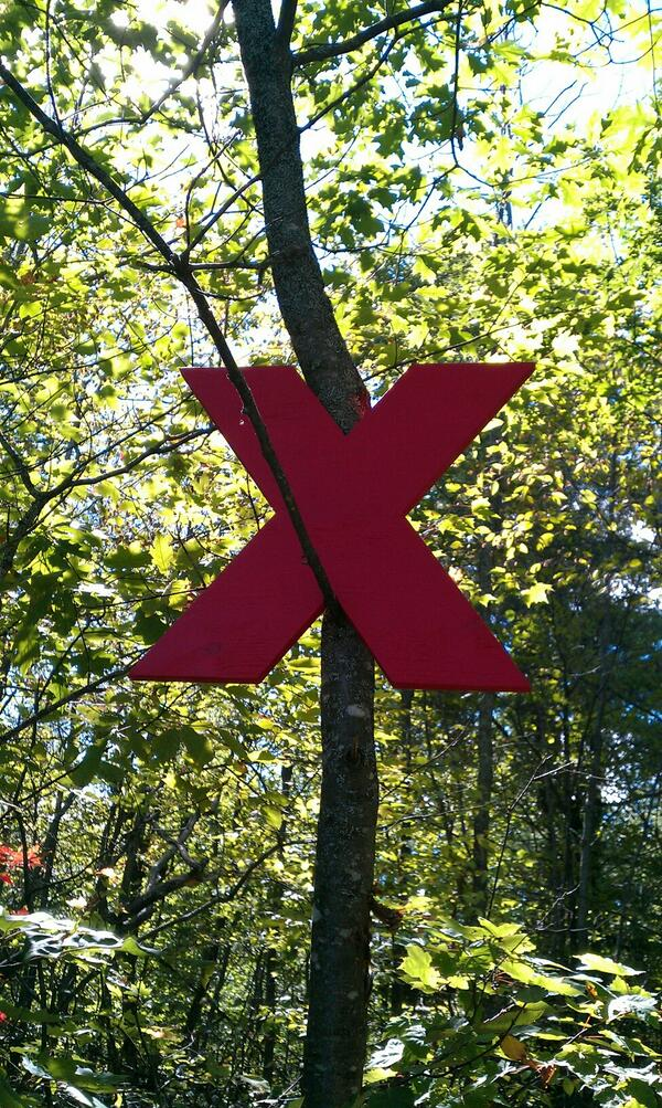 Even the trees are eXcited for TEDxAlgonquinPark! http://twitter.com/TEDxAlgonquinPk/status/375650873780617216/photo/1