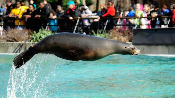 .@TheBronxZoo is the perfect play to take the #kids while visiting #NYC! #FriFotos http://t.co/DYhmXBmxCK