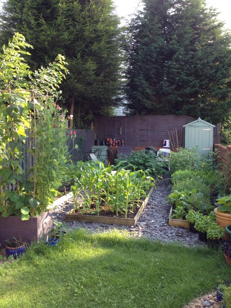 prettying up my scruffy garden plot