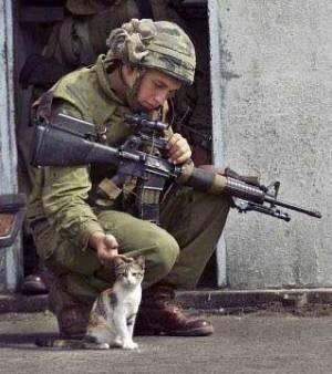 """◇ 「M16A2」 や 「M4 カービン」 が有名 「M16」 シリーズだが、本来は、元祖の 「AR10」 や 「AR15」 を総称する """"「AR15」 シリーズ"""" 等と呼ぶ。 ※画像は 「M16シリーズを装備する兵士」 pic.twitter.com/jy0VSIopQg"""