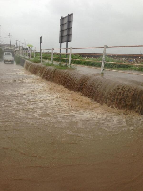 桂川。下鳥羽で氾濫しました。