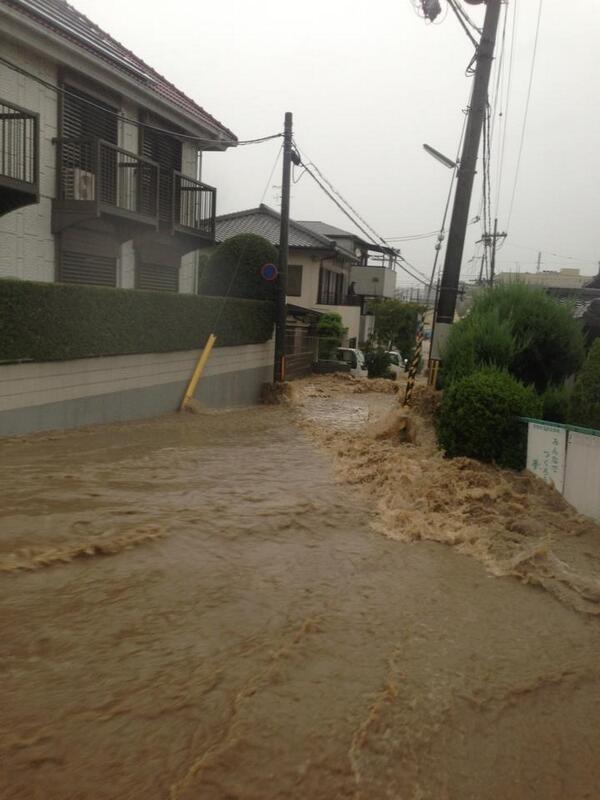 桂川、下鳥羽で氾濫です。