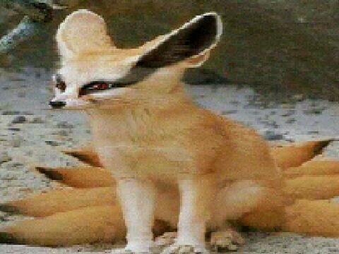 Raihan Sungkar On Twitter Kyubi Kecil Tp Asli Narutofilm Id Naruto Picture Http T Co D3e3wwcgee