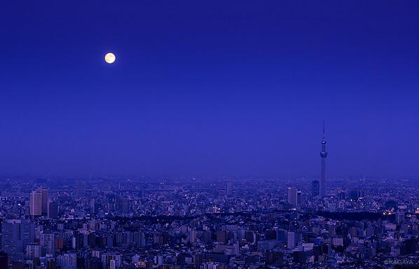 東京の空に昇る中秋の名月。今夜は一晩中この満月が地上を明るく照らします。