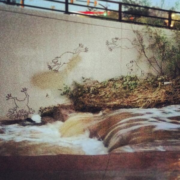 These little guys made me smile on my run tonight🐸🌊 #frogs #creek #splash #boulderflood #smile #run #boulder #col... http://twitter.com/St_Art_Boulder/status/380725617160769536/photo/1