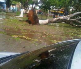 @ahmundocarora images de tormenta de granizos en Carora http://twitter.com/noramsuarez/status/383755055117377536/photo/1