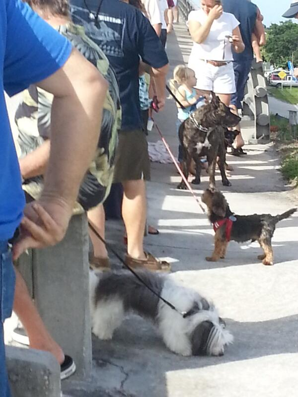 Thanks to all the people and pets rallying to save #indianriverlagoon http://twitter.com/MichaelGoforth/status/383983913720643584/photo/1