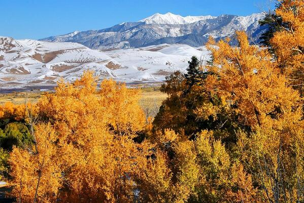 Fall colors have arrived at the Great Sand Dunes National Park.  Department of Interior