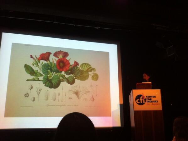 .@deadexplorers showing never-before-publicly seen engravings of Tinne's botany @DeathSalon #deathsalonla http://t.co/M0vV5eKwrj