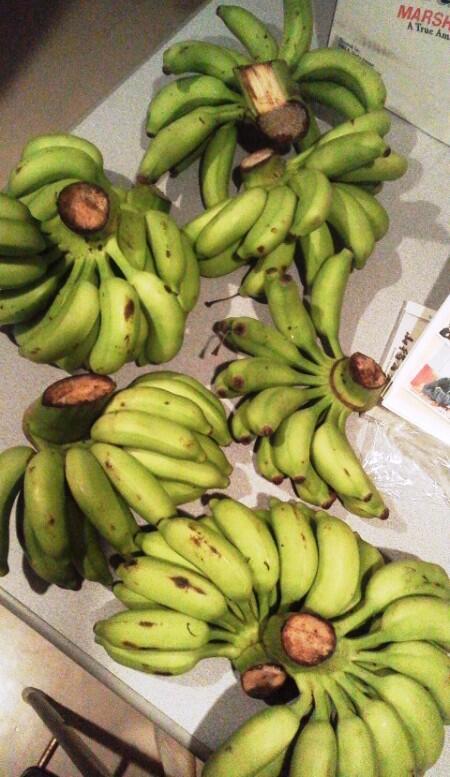 バナナがたっくさん