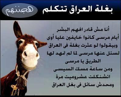 كاريكاتير الثورة المصرية - صفحة 2 BX26CGHCAAEUw1h