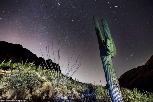 Pioggia di meteoriti Orionidi, le stelle cadenti in Diretta Streaming.