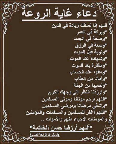 حسن الخلق 2225550100 Twitter