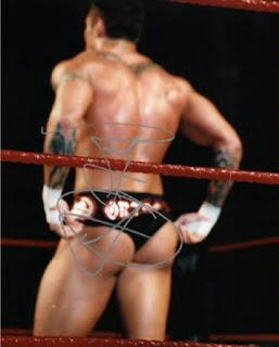 Full naked picture randy orton opinion you
