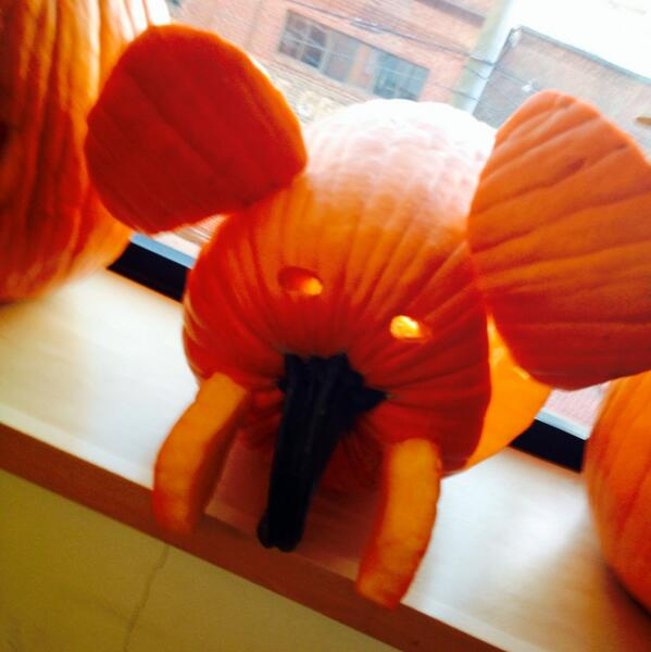 Kyle bye on twitter elephant pumpkin carving contest for How to carve an elephant on a pumpkin