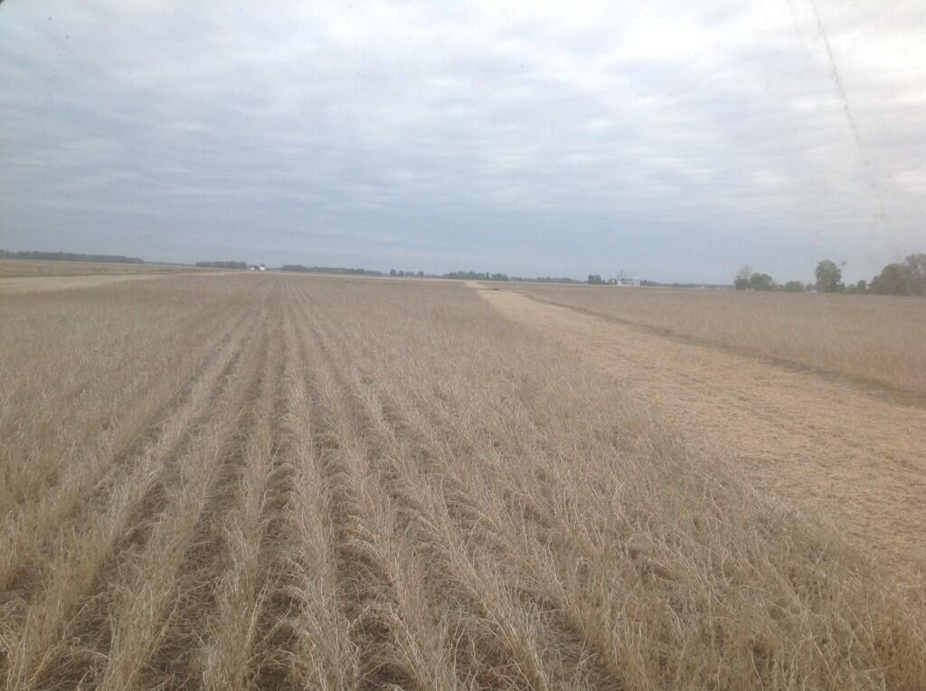 Twitter / thefarmerslife: Last day for soybeans not ...