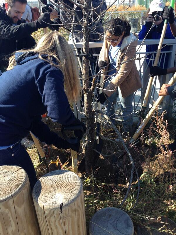 Volunteers continuing #Sandy recovery at Rockaway Beach, #DayofAction #builditback #sandy1year http://t.co/UvbIqGmqyN