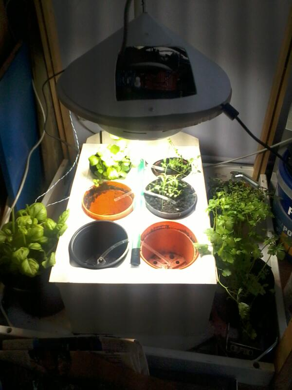 Arduino-based plant-growing system