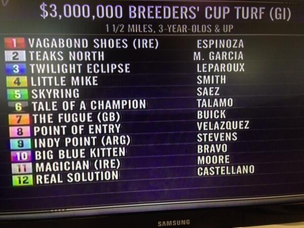 2013 Breeders' Cup Turf (G1) BXsO4jMCQAIc2Wt