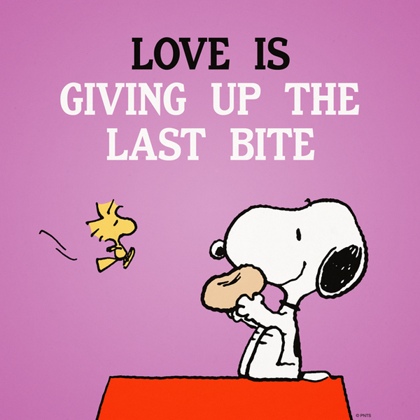 """""""@Snoopy: Love is giving up the last bite. pic.twitter.com/HaTNLDdcQv"""" not ever when it's chocolate !"""