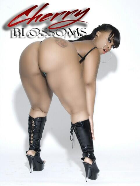 To book me for the holidays call 646-406-8098  or email me cherryblossomsxxx@gmail.com. http://t.co/