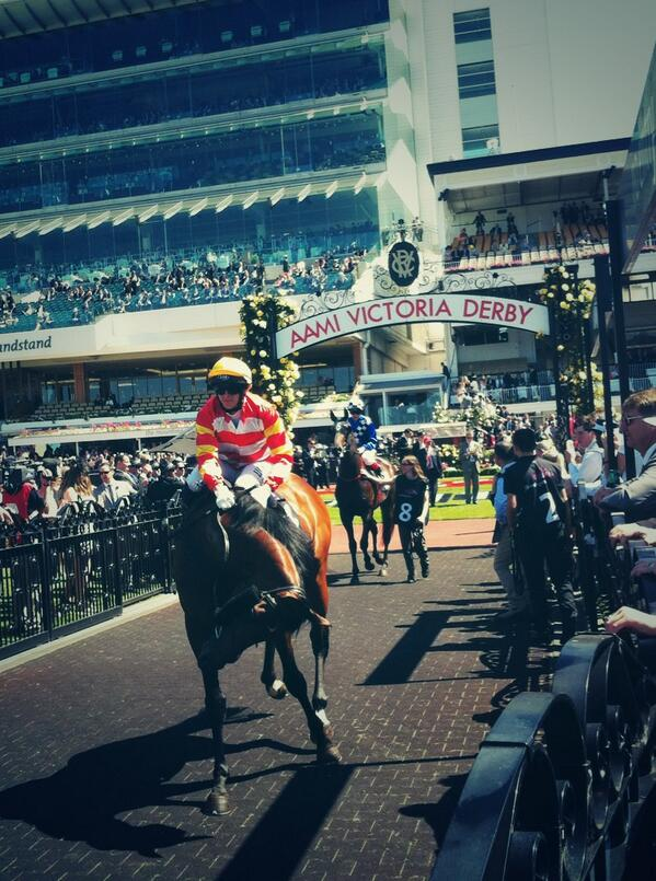 #CarbineClub nags ready to roll @FlemingtonVRC #DerbyDay #theclocktower http://t.co/i2y993jiaL